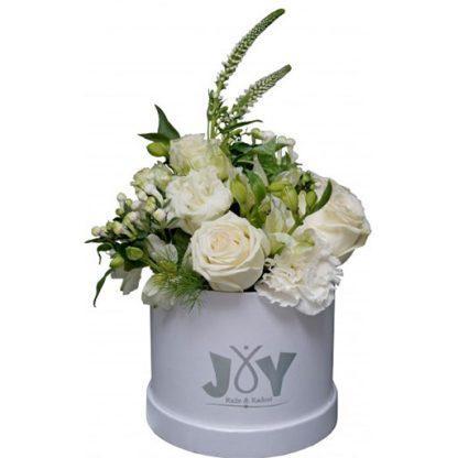 cveće u kutiji - čarobna šuma
