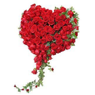 zanosno srce od ruža
