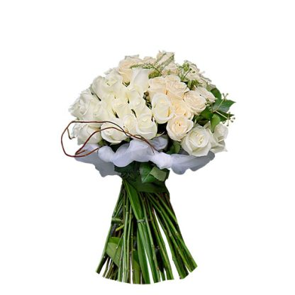 Prefinjene bele Ruže