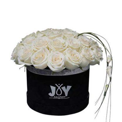 Ime ruže joy